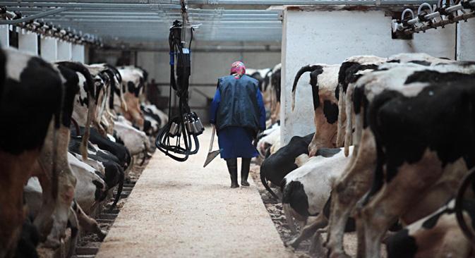 Eine neue Technologie aus Russland  könnte den Milchmarkt revolutionieren. Foto: Igor Russak/RIA Novosti