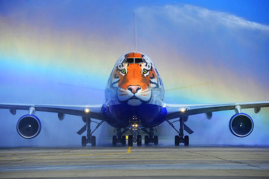 """Eine Boeing der Fluggesellschaft Transaero landet am """"Tag des Tigers"""" in Wladiwostok."""