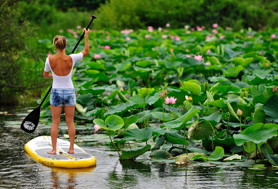 Момиче на дъска за сърф на езерото Карасиное до Артьомовската топлоелектроцентрала, Приморски край.
