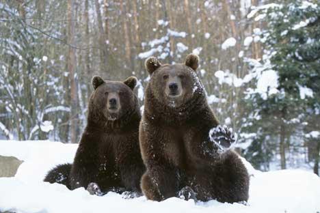 Lassen Sie sich von Vorurteilen nicht von einer Reise nach Sibirien abhalten.