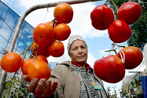 Devido ao súbito aumento do preço das frutas e legumes, a esperada volta da inflação para o índice previsto nas metas foi adiada em um trimestre Foto: ITAR-TASS