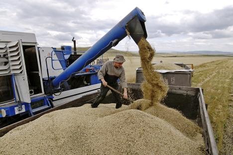 Proposta do governo não só aumentará produtividade na pecuária, mas também pode impulsionar exportações Foto: ITAR-TASS