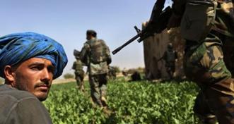 War on Afghan Drugs