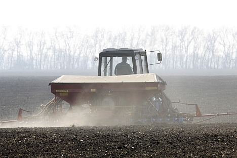 The highest prices for farmland in the Russian regions were found to be in the Krasnodar. Source: ITAR-TASS