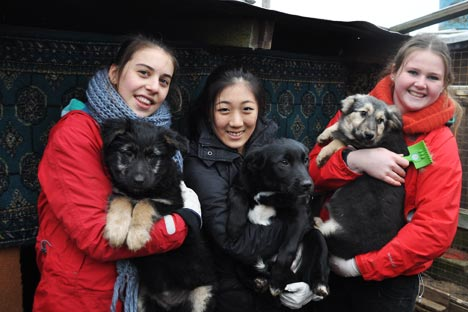 Jiyoon Park (center) with her friends in the abandoned dogs shelter located outside Moscow. Source: Press photo
