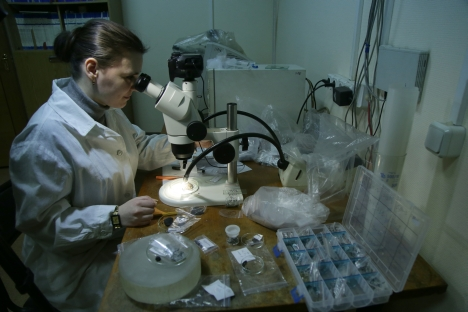 A research scientist of the Vernadsky Institute of Geochemistry and Analytical Chemistry examines fragments of the Chebarkul meteorite through a microscope. Source: RIA Novosti / Valeriy Melnikov