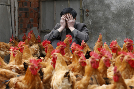 "There are over 60 people have alredy contracted the ""bird flu"" in China. Source: Reuters / Vostock Photo"