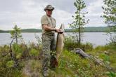 Putin fishing in Tyva