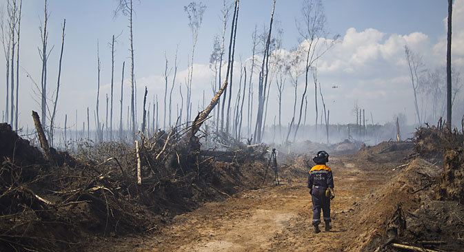 A forest ravaged by a peat fire that emerged due to an abnormal heat. Source: ITAR-TASS