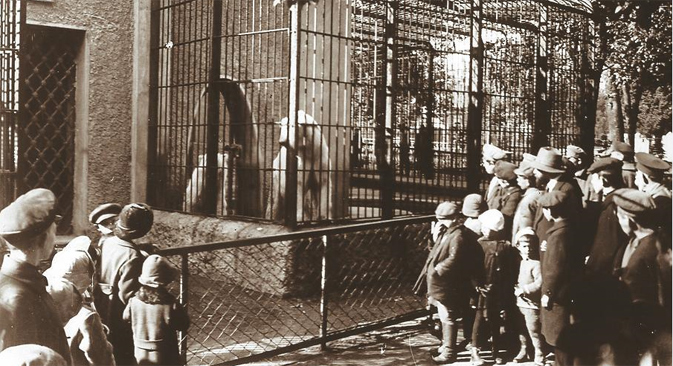 Moscow zoo, 1910s. Source: Press photo