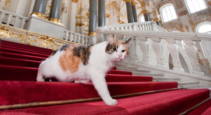 Francesca, the Jordan Staircase. Source: Yury Molodkovets