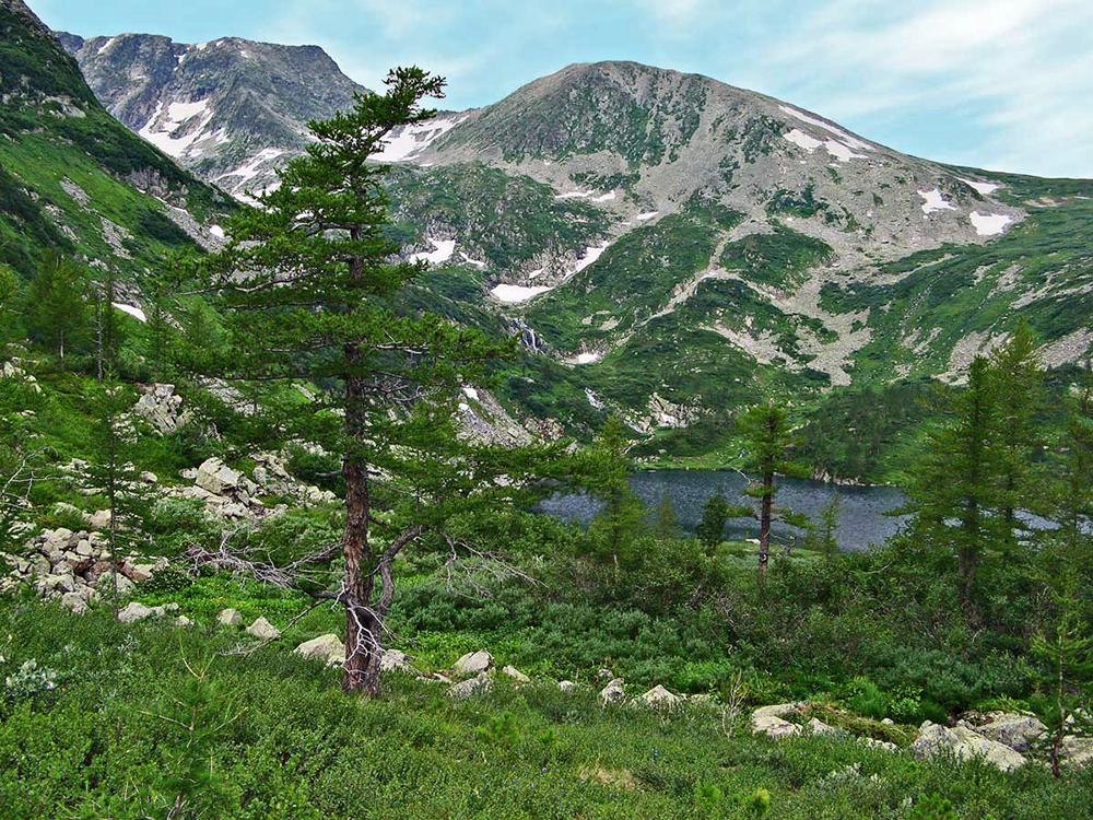 Cordillera Kuznetsk Alatau, región de Kémerovo. Fuente: Gamma-aspirin/ Wikipedia