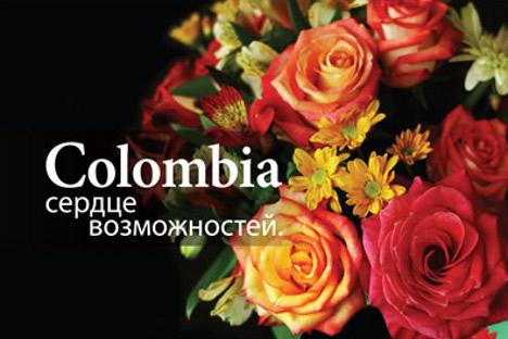 Las flores con mayor cuota de exportación al país euroasíatico son las rosas, los claveles y los crisantemos. Fuente: Proexport.com.