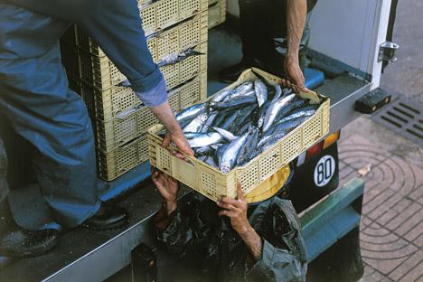 Транспорт на риба.