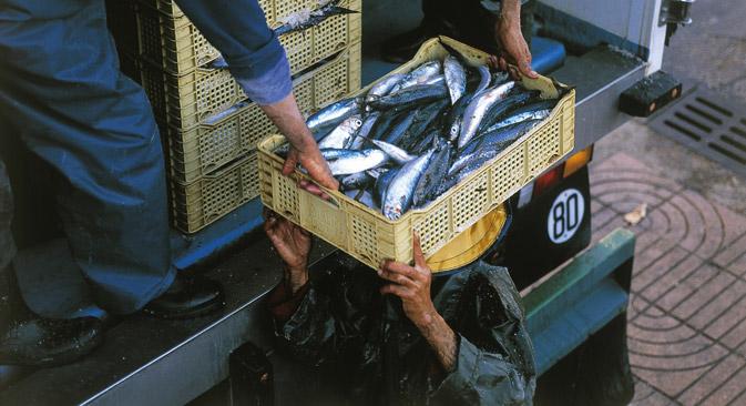 La Federación Rusa suministrará camiones y formará a estudiantes de países africanos a cuenta del presupuesto estatal. El intercambio permitirá a las empresas rusas conseguir más pescado en el Atlántico. Fuente: AFP / EastNews