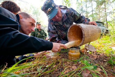 Abejas silvestres de Baskiria producen un manjar que puede llegar a costar 200 euros el kilo. Fuente: strana.ru