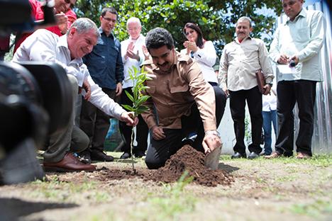 Ígor Sechin, presidente de Rosneft, y Nicolás Maduro, presidente de Venezuela, siembran un naranjo en Sabaneta de Barinas. Fuente: Ministerio de Comunicación e Información de Venezuela