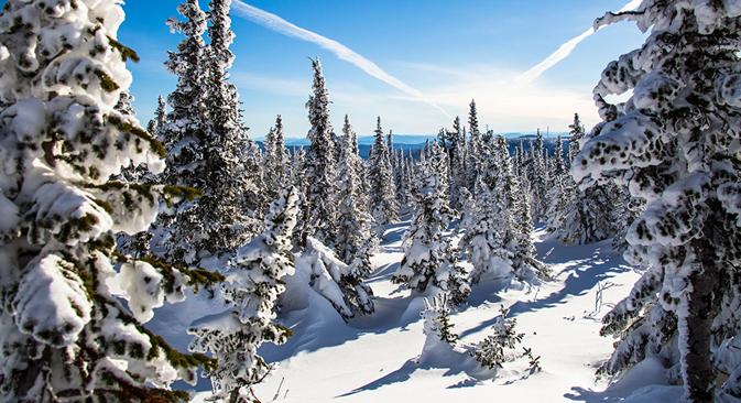 La vida se transforma con la llegada de la nieve y el frío en una de las regiones más despobladas del mundo. Fuente: Elena Safónova