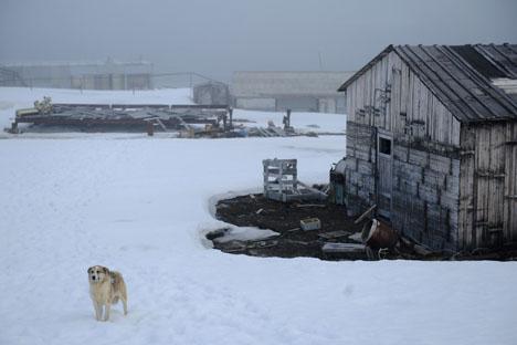 Estación meteorológica abandonada en la isla Hayes, situada dentro del Círculo Polar Ártico. Fuente: Ria Novosti