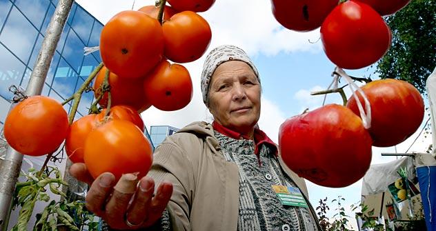 La loi prévoit également de soumettre la production des denrées alimentaires à un contrôle strict, en mettant en place une certification des produits. Crédits photo: Itar-Tass