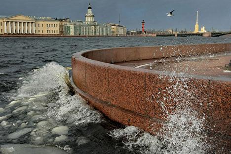 Traitement de l'eau de la Néva: les écrevisses veillent! Crédit photo: Alexandre Petrosyan / Focuspictures
