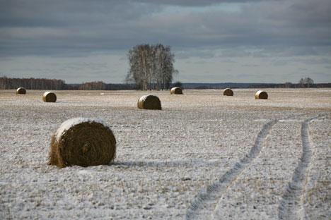 Les chercheurs analyseront les principaux paramètres climatiques pour l'ensemble du pays au cours des 10-20 dernières années. Crédit photo: RIA Novosti