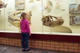 musées pour enfants
