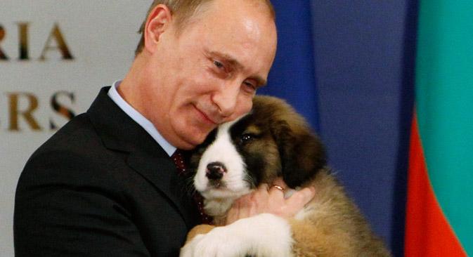 13 Novembre 2010, Vladimir Poutine serre dans ses brans une berger bulgare, cadeau du Premier ministre de Bulgarie Boyko Borrisov. Crédit : Reuters/Vostock Photo