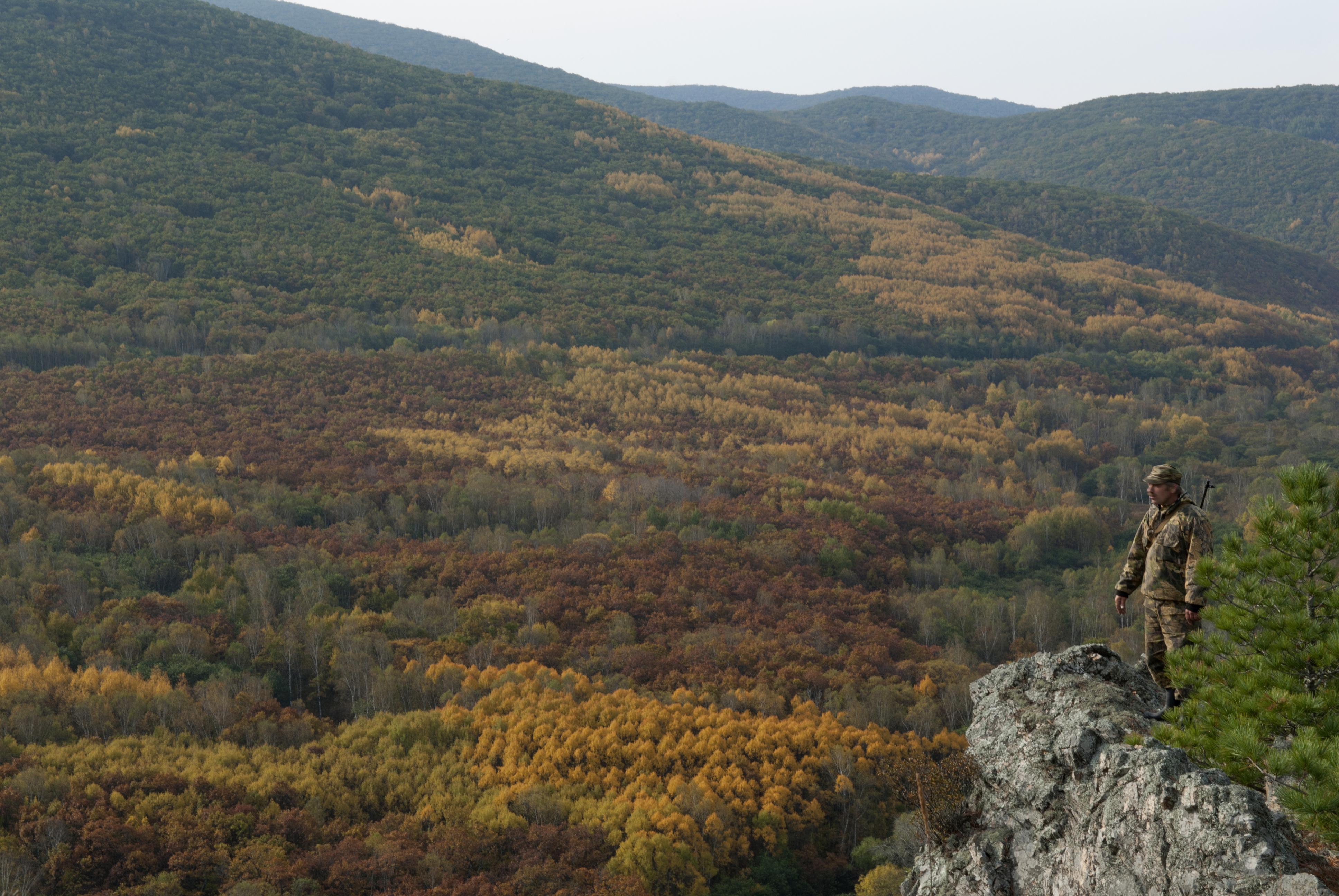 La réserve naturelle de Sikhote-Aline.
