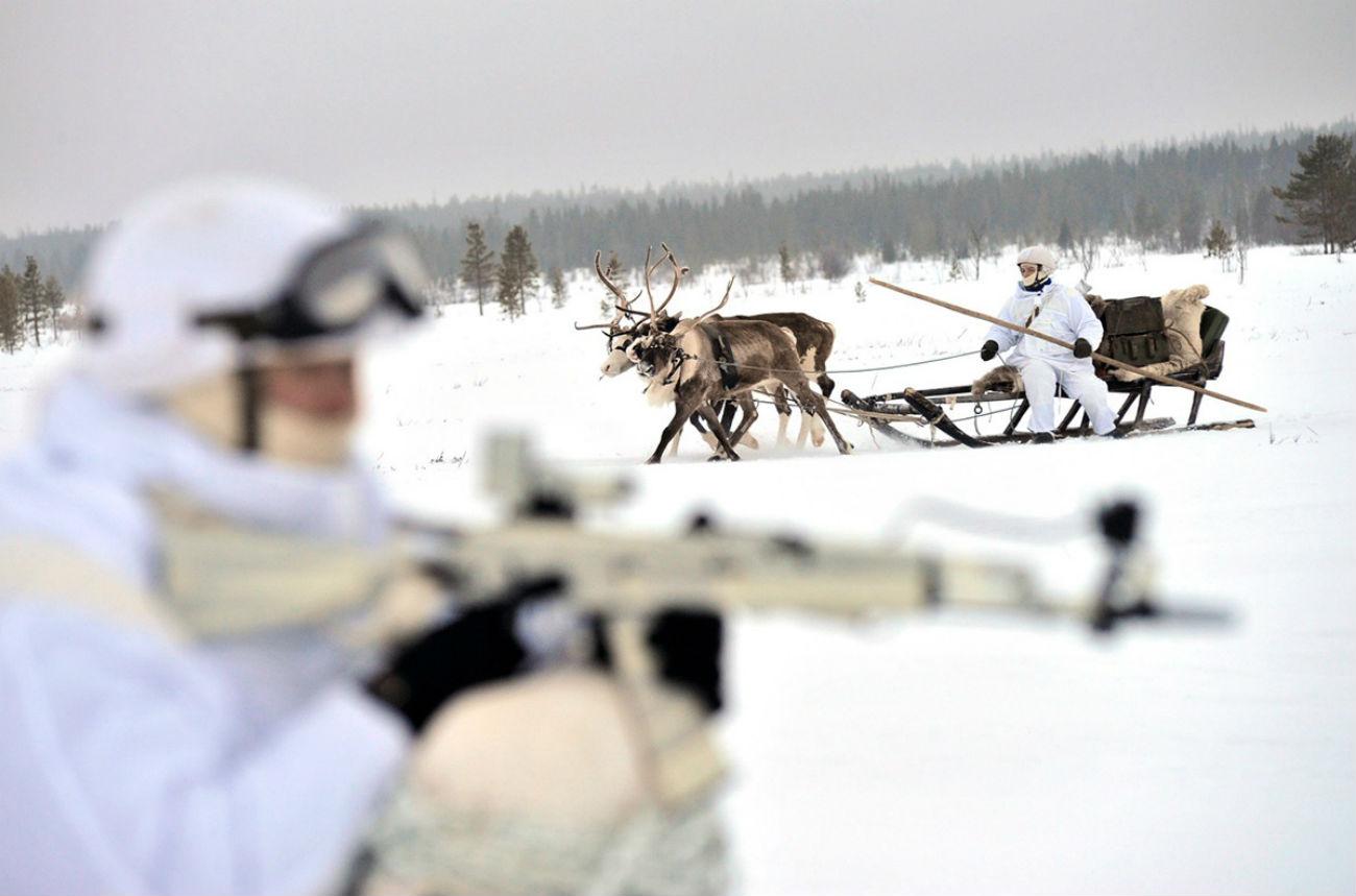 Във военните учения на арктическата бригада на Северния флот се включиха и елени.