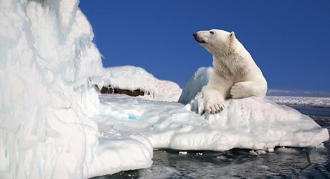 Rusija je spremna za eksploataciju neizmjernih bogatstava skrivenih ispod arktičkog leda. Izvor: Lori / Legion Media.