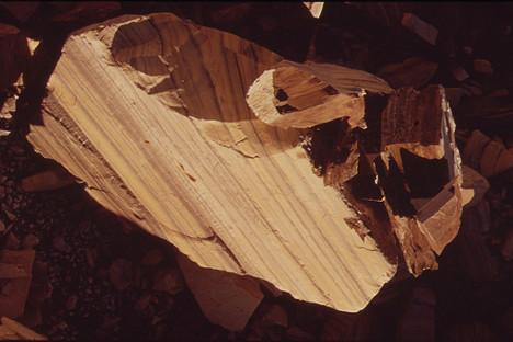 Uljni škriljac iz Colorada. Fotografija: U.S. National Archives. Iz slobodnih izvora.