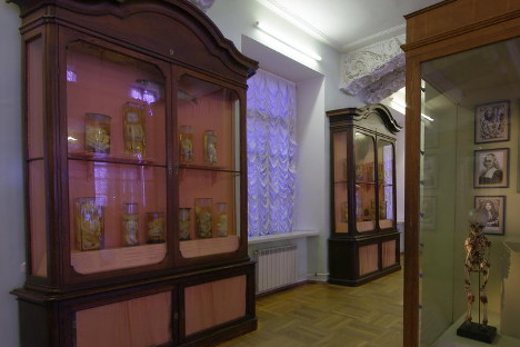 """""""Prve prirodnjačke zbirke Kunstkamere"""" u Sankt-Peterburgu, prva ruska muzejska i znanstvena zbirka. Izvor: Kultura.fr"""
