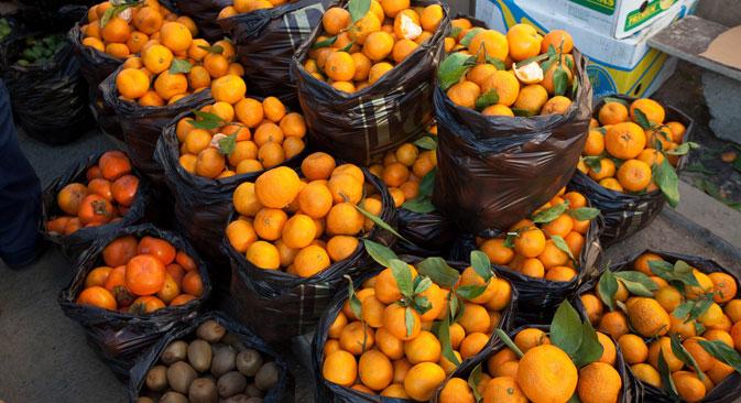 Posebno su zabrinuti izvoznici mandarina, koji ove godine očekuju rekordan urod od 80 tona, a čije je glavno tržište bilo rusko. Izvor: PhotoXPress