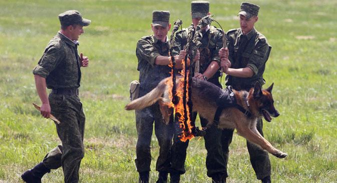 Izvor: Egor Erjomov / Ria Novosti.