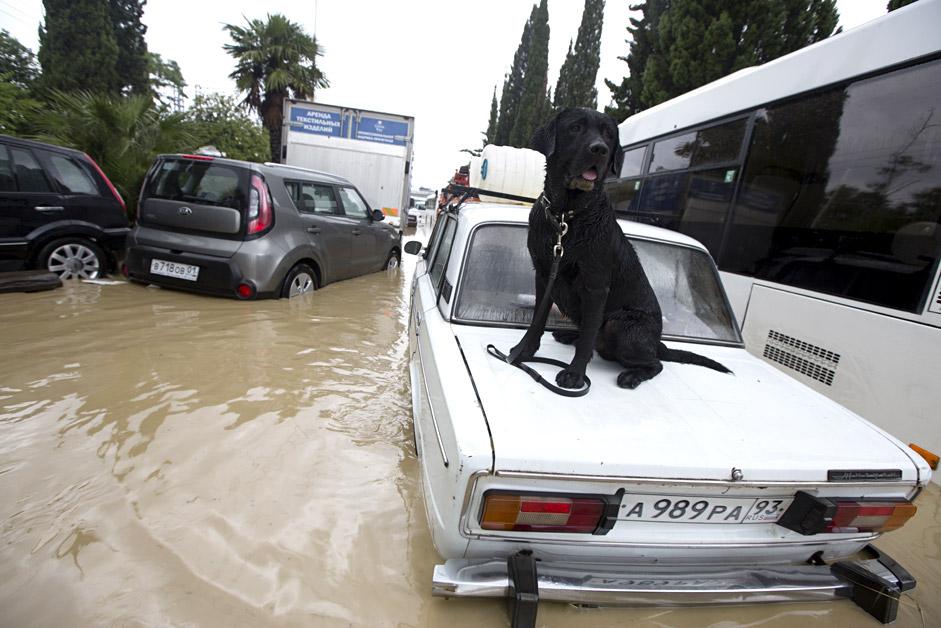 Ulica u Sočiju potopljena tijekom obilnih kiša 23. lipnja 2015. Izvor: Oleg Smerečenskij/RIA Novosti.