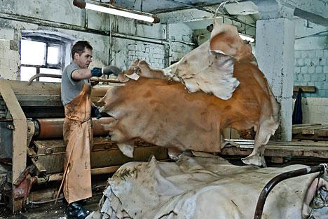 Kebijakan larangan sementara penjualan produk kulit Rusia ke luar negeri diambil bukan sebagai reaksi atas sanksi internasional pada Rusia, melainkan karena defisitnya pasokan komoditas kulit di dalam negeri. Foto: Photoshot/Vostok Photo