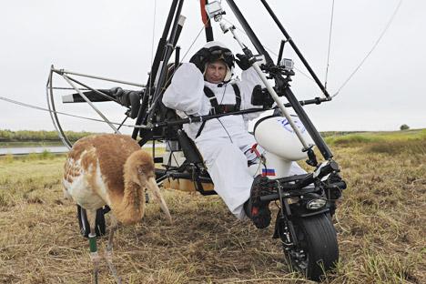Vladimir Putin dalam Deltaplane bermotor di samping seekor bangau putih Siberia di distrik Yamalo-Nenets, 5 September 2012. Putin memimpin kawanan bangau bermigrasi. Foto: Photoshot Vostock Photo