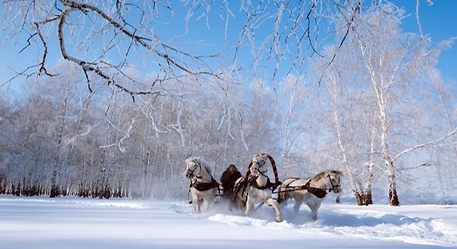 Foto: Victor Sadchikov/TASS