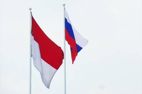 Indonesia adalah salah satu negara yang memiliki perekonomian paling maju di ASEAN dengan pertumbuhan PDB tahunan sebesar 4 – 5 persen dan secara aktif memperluas kemitraan dagang dengan Rusia.