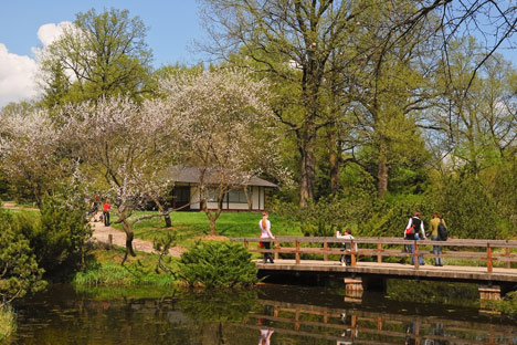 Botanical garden in bloom. Credit: Lori/Legion Media