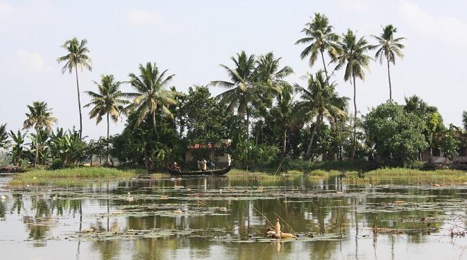 Kerala is a popular destination for Russian tourists. Source: Ajay Kamalakaran