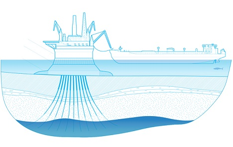 The outline of the Prirazlomnaya oil platform. Source: Gazprom's official web-site