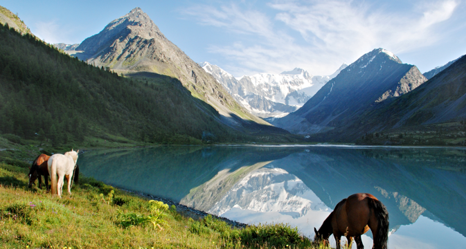 Morning in the Altai Mountains. Source: Shutterstock