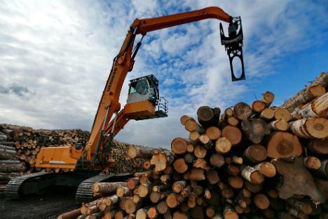 Supplies of Russian timber were reduced to the leading European importers. Source: TASS