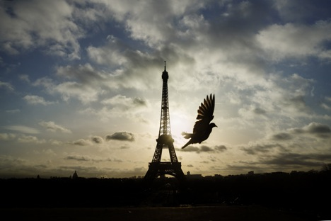 A bird flies in front of the Eiffel Tower ,which remained closed on the first of three days of national mourning, in Paris, Sunday, Nov. 15, 2015.