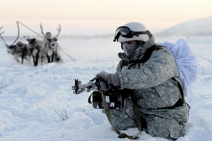 The soldiers tried to control the dog and reindeer sleds.