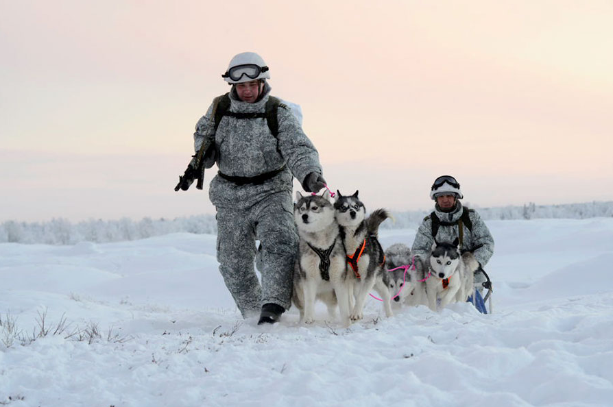 Siberian huskies have also entered the ranks of the Russian Northern Fleet's contingent in the Arctic.