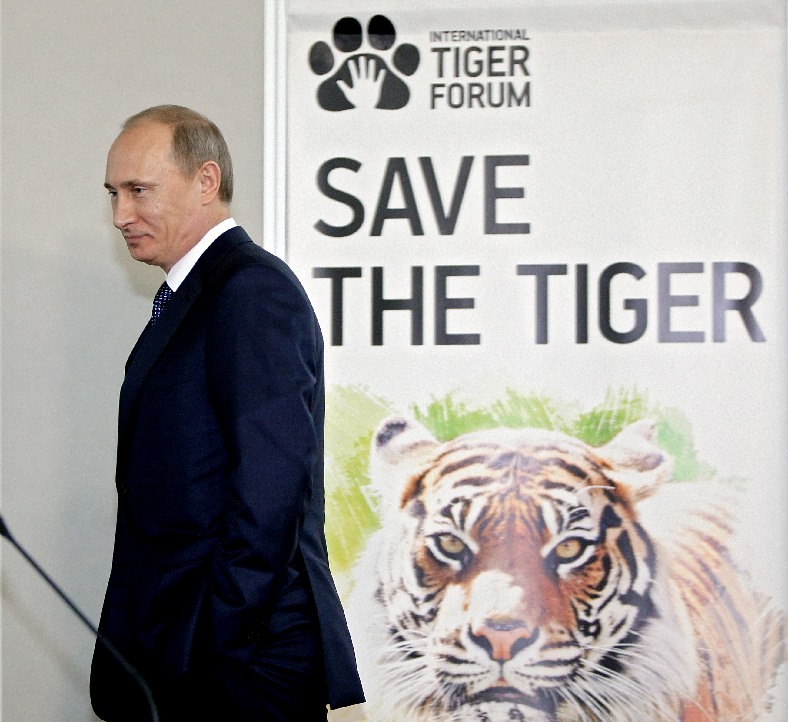 Vladimir Putin at the International Tiger Conservation Forum, November 23, 2010.