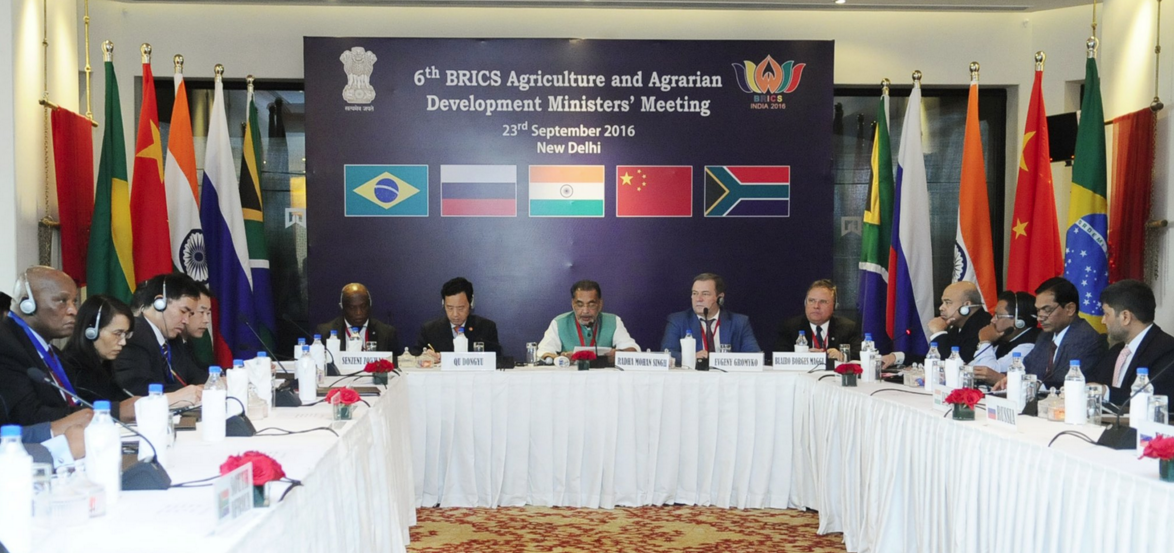 BRICS states are key suppliers of agricultural products to the world market.